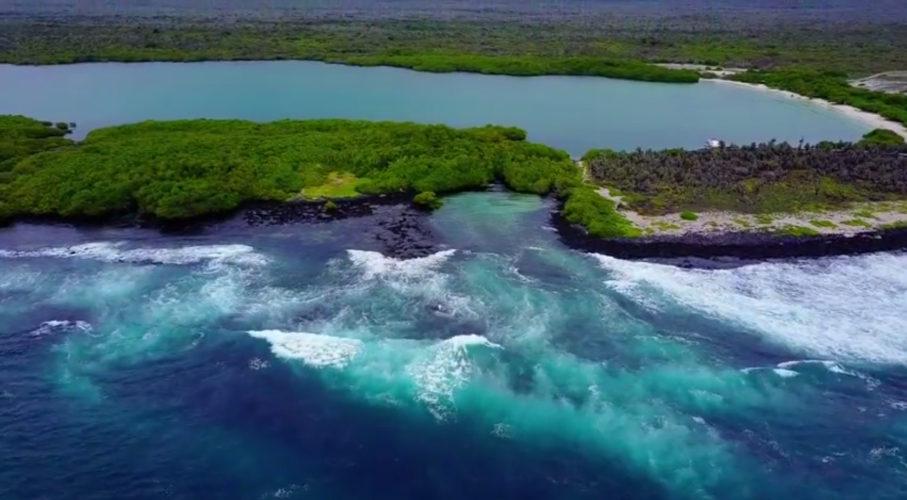 4 Galapagos Islands. 4 Galapagos Videos.