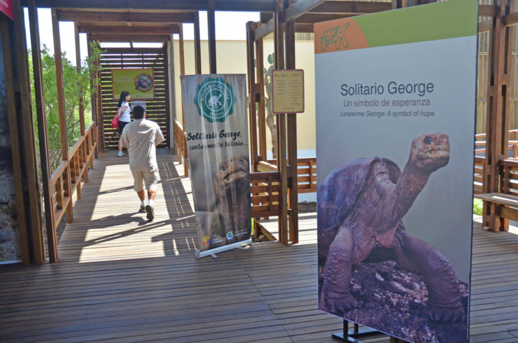 Lonesome George Exhibit in the Galapagos