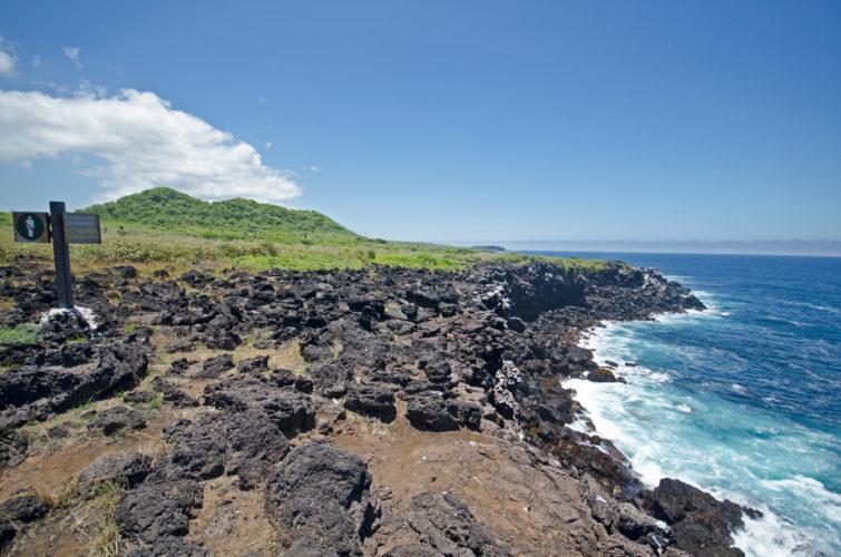 La Loberia Coastline hike to Bird Cliffs