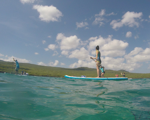Sup and Swim in Galapagos!