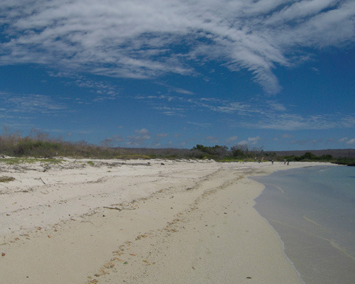 White sandy beach in the Galapagos